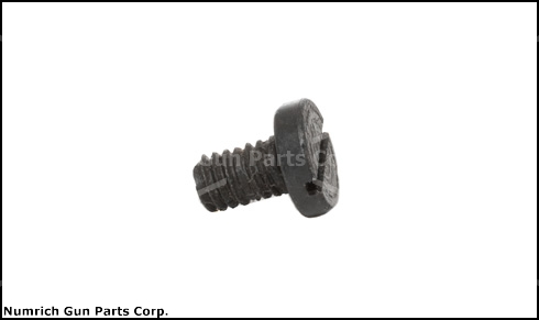Safety Detent Spring Screw