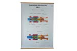 "Bolt Mechanism Chart, English (Color, 37"" High x 34"" Wide)"