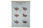 "Trigger Mechanism Chart, English (Color, 37"" High x 34"" Wide)"