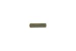 Hammer Spring Plunger Pin