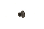 Striker Retainer Screw, Blued