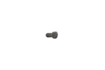 Loading Gate Screw