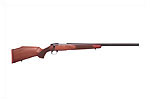 Stock, Model L461 Varmint, A1 Short Action, Right, European Walnut, Oil Finish