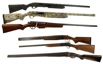 An Introduction to Shotguns