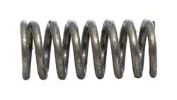 Center Pin Plunger Spring, New