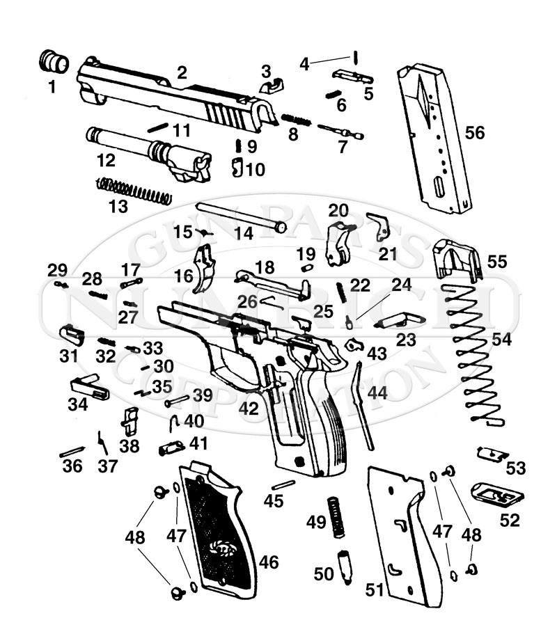 dp51 schematic